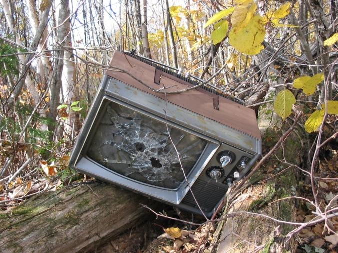 broken_tv_in_woods